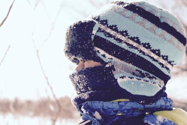 winter-1209119