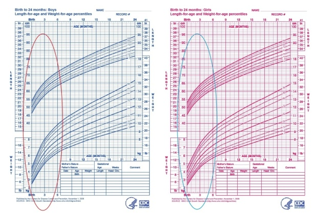 Baby-Height-Age-Chart-1024x690